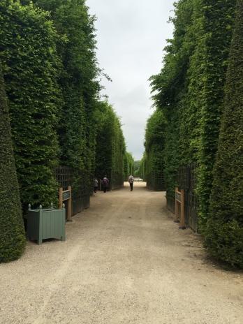Labirintos :)